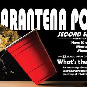 Quarantena Pong, il primo torneo internazionale di Beerpong Online.
